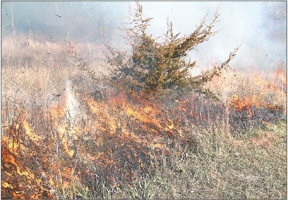 County conservation manages land with fire