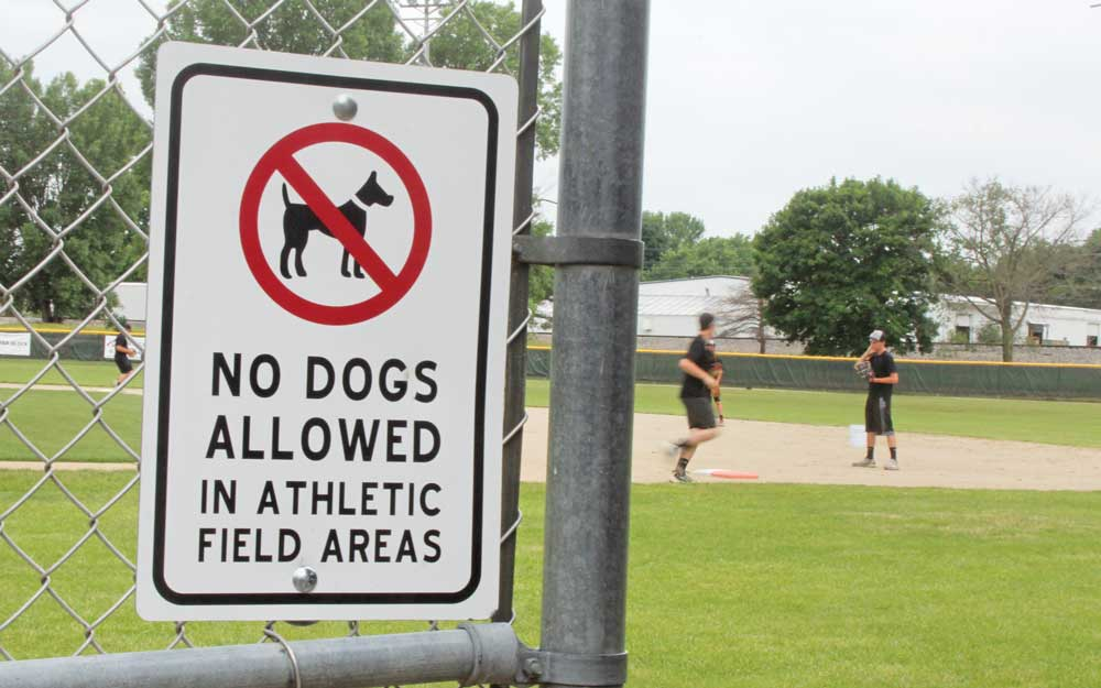 Park Board approves Victory Park updates, discusses dog problem at ballfields
