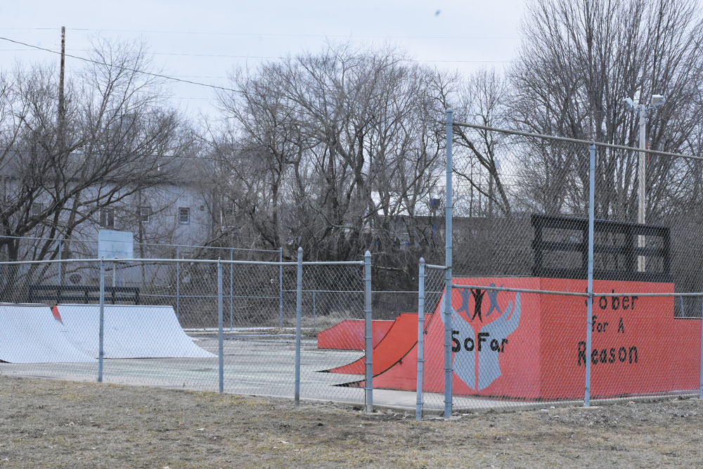 Seed money used to draw organizations to skate park project