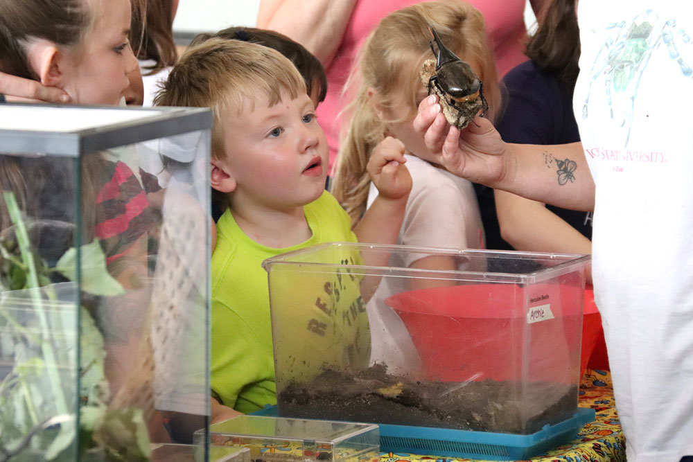 Kids bug out learning about insects at Charles City Library