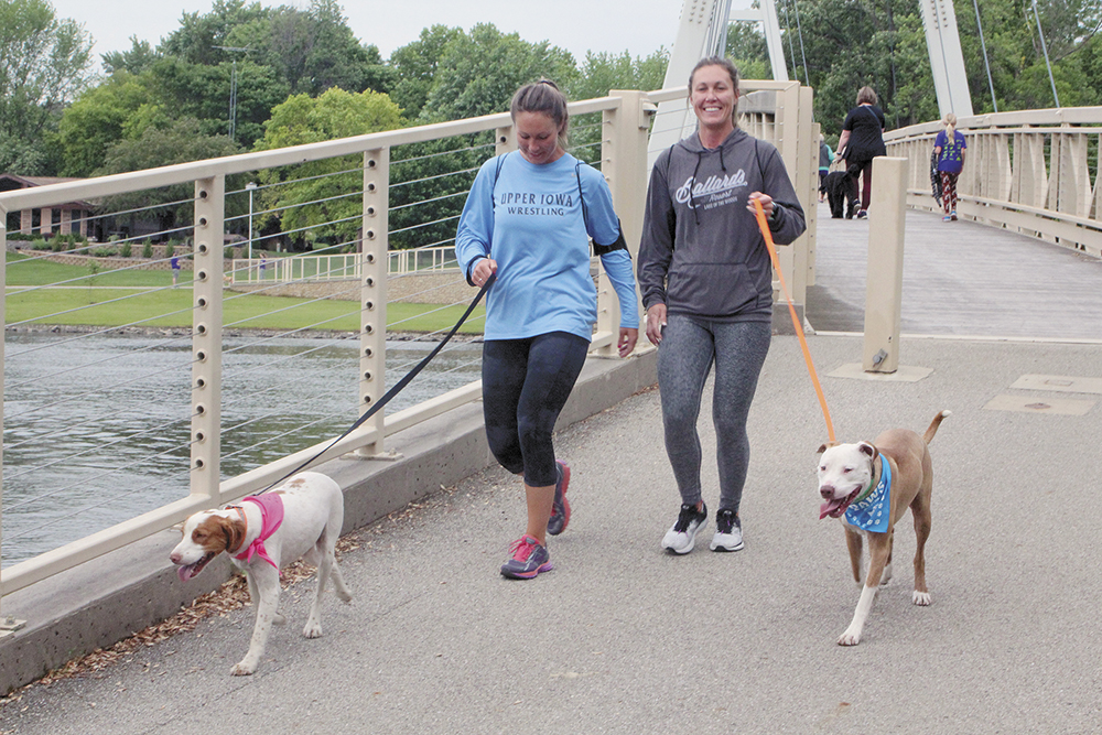 Dogs take a jog in Charles City