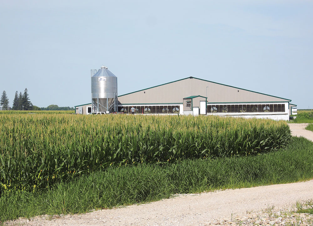 Floyd County Lancer LLC confinement operation back for second swine building